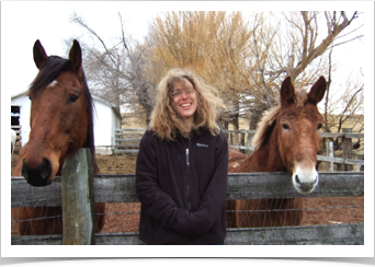 emily, horse, and mule (smaller).jpg